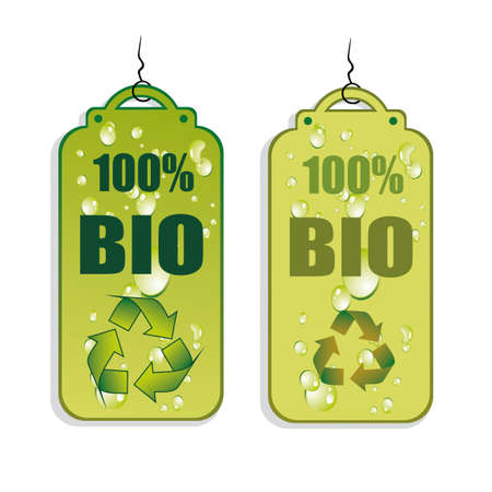 Green Recycle and Bio tag icons - set 1 Vector
