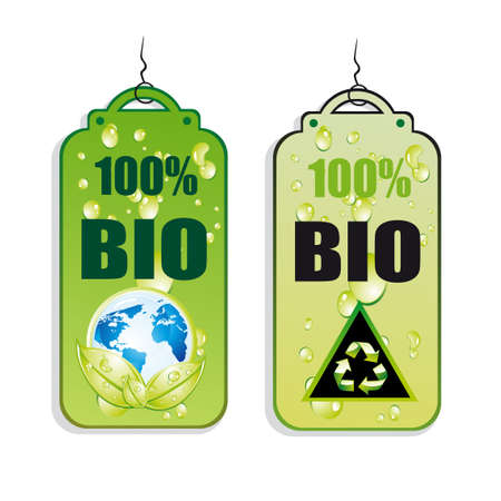 Green Recycle and Bio tag icons - set 2 Vector
