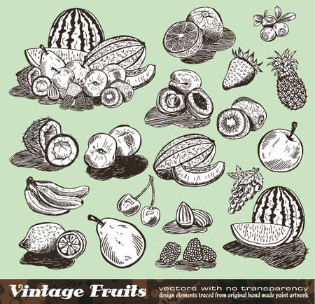 Vintage Fruits Collection - Set of Various Design Elements created from original hand draw Vector