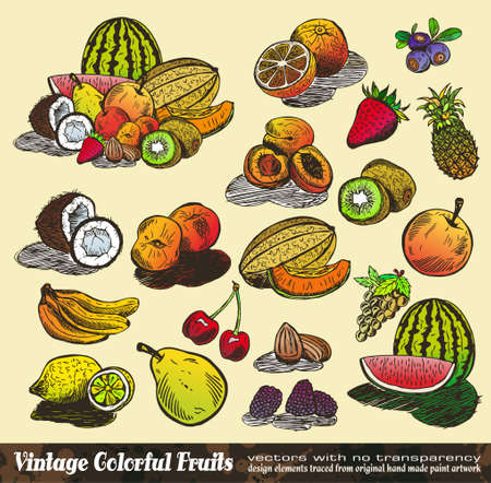 Vintage Colorful Fruits Collection - Various Design Elements created from original hand draw Vector