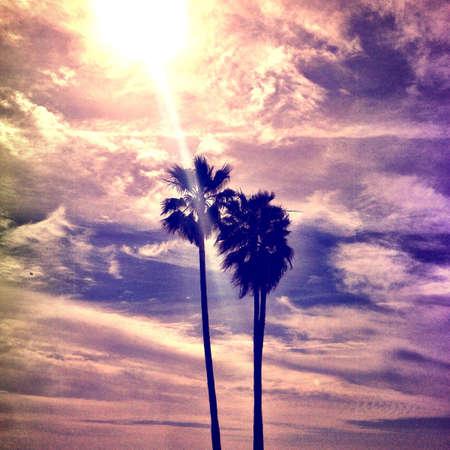 california beach: California long beach