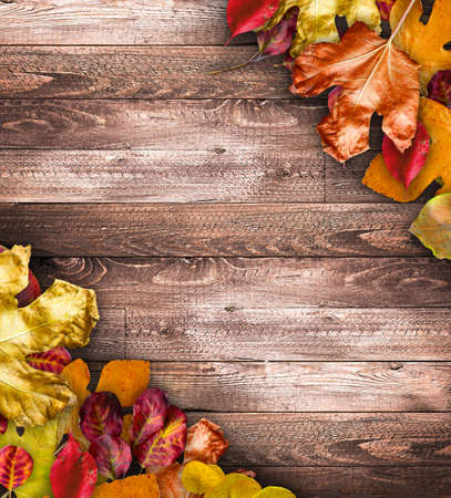 dirt: Autumn Leaves over a Natural Dark Wooden background. Old dirty wood tables or parquet with knots and holes and aged partculars.