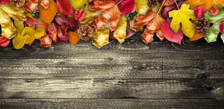 old texture: Autumn Leaves over a Natural Dark Wooden background. Old dirty wood tables or parquet with knots and holes and aged partculars.