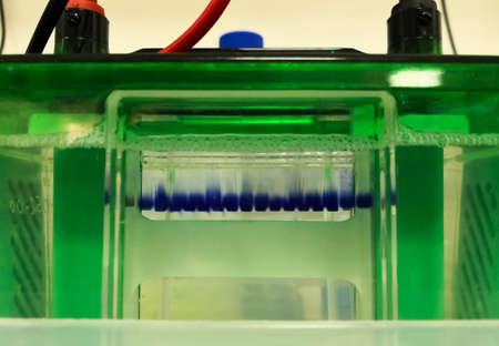Electrophoresis, scientific laboratory technique Stock Photo
