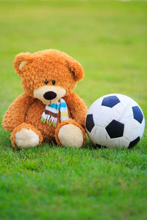 bear doll: cute bear doll with football isolated on green grass Stock Photo