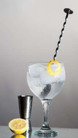 botanics: Gin Tonic with lemon and botanics in a balloon glass on grey background. With bar spoon and measure cup. Stock Photo