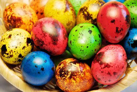 色塗りウズラ バスケットでイースターの卵