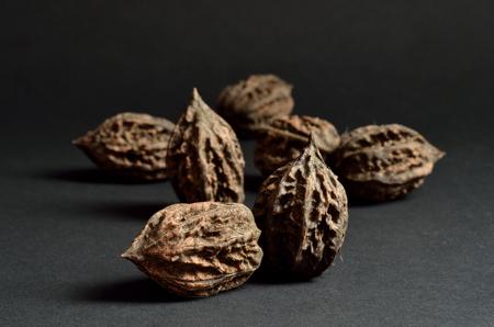 Manchurian walnuts on dark background. Selected focus. 免版税图像
