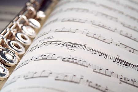 musicality: Una scanalatura utilizzata si trova lungo la spina di un segno musicale aperto. Soltanto una linea di musica � nel fuoco.