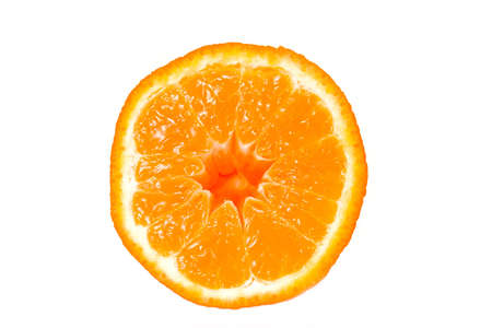 Closeup isolated shot of half a wet orange. Shot against a white background.