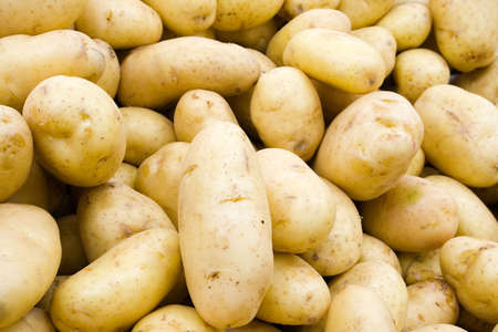 spud: A pile of potatoes at the local grocery store.