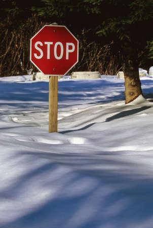 treacherous: Stop Sign
