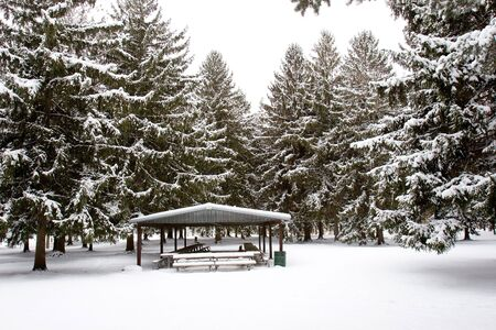 Picnic Shelter in Winter photo