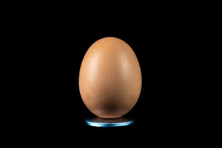 egg isolated on a dark background