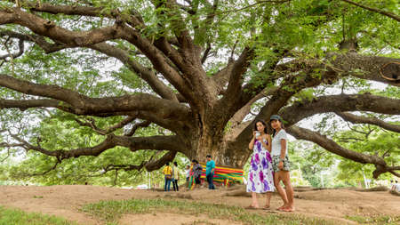 Mother and daughter standing in front of Giant Monkeypod Tree in Kanchanburi Thailand 免版税图像