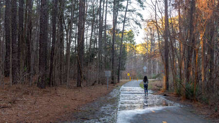 woman walking down empty bath in woods with puddles on bike path 写真素材