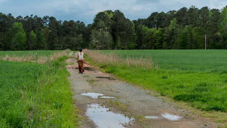 Back of woman in sarong walking away  on dirt road with puddles in field Stockfoto