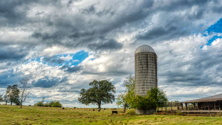 Barn and silo in a field with trees in rural North Carolina on a stormy day