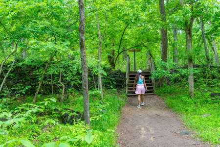 Middle Age woman with pink sweater approaching wooden stairs on trail in National Park