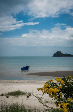 Blue fishing boat sitting in the sand at low tide with islands and blue sky in the background and bushes and flowers in the foreground 免版税图像