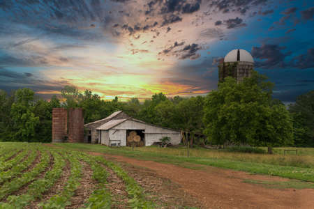 farm with silos and dirt roat with crops at sunset iwth beautiful skies