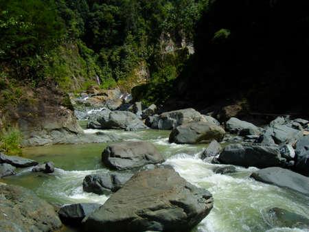 lussureggiante: Lussureggiante fiume in Repubblica Dominicana Archivio Fotografico