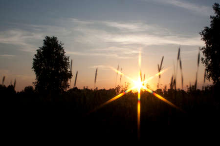 diffraction: Evening rays of the sun Stock Photo
