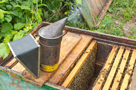 Smoker � one oSmoker � one of the main instruments of the beekeeper. Its smoke pacify bees.f the main instruments of the beekeeper. Its smoke pacify bees. Stock Photo - 82480642