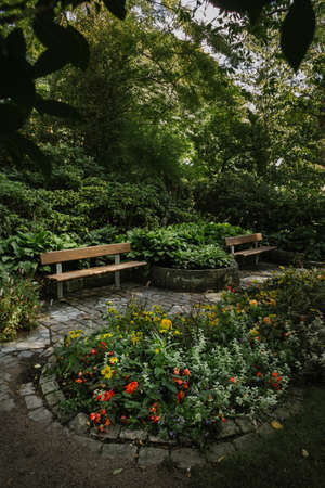 Wooden bench in secluded and peaceful corner of a park during spring 스톡 콘텐츠