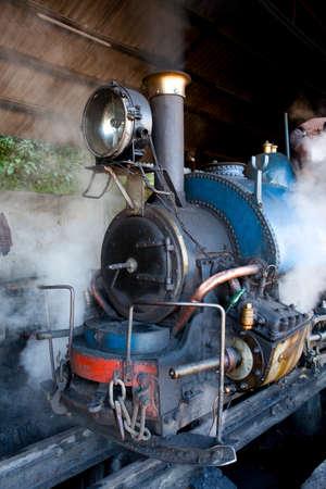 darjeeling: The Toy Train in Darjeeling on the Darjeeling Himalayan Railway Line, West Bengal, India.