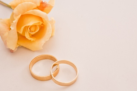 Wedding rings on a cream background with a yellow rose Stock Photo