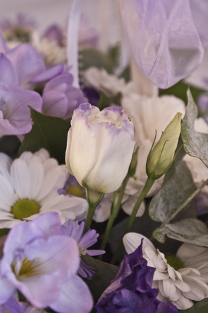 Beautiful bouquet of white, lilac and purple flowers with a rose at the front
