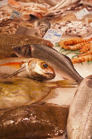 visboer: Verse vis op een visboer kraam in een overdekte markt