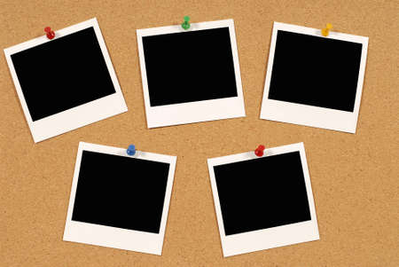 bulletin board: Cork notice or bulletin board with several blank instant camera photo prints. Space for copy. Stock Photo