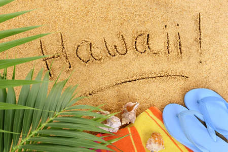 towel beach: Hawaii beach background with palm leaves, towel and flip flops.