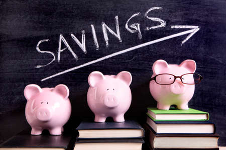 Three pink piggy banks standing on books next to a blackboard with simple savings message.  Sharp focus on the piggy banks. Banco de Imagens