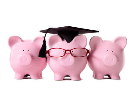 white piggy bank: Row of pink piggy banks, one dressed as a college graduate with mortar board and glasses.  Isolated on white.