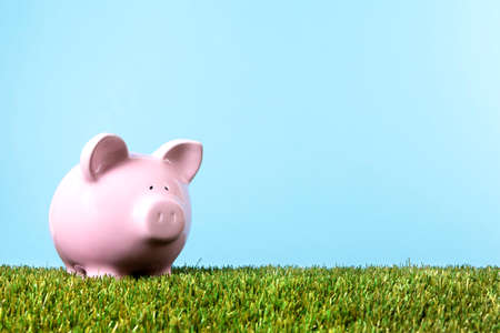 Pink piggy bank with grass and blue sky