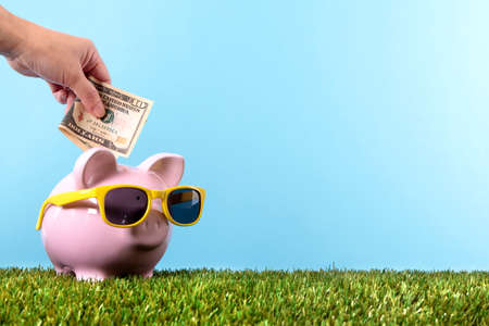 Hand putting a ten dollar bill into a pink piggy bank, with sunglasses, grass and blue sky