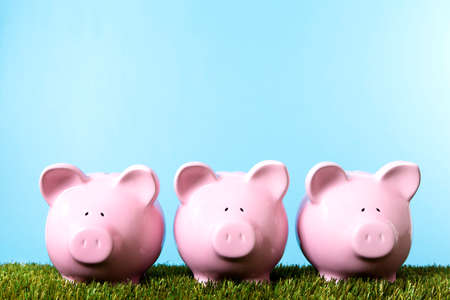 Three pink piggy banks on grass with blue sky.  Studio shot with plain blue background.  Space for copy.