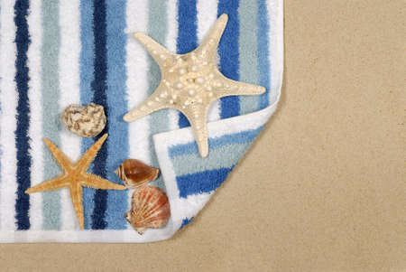 beach towel: Seashore scene with shells beach towel and starfish.