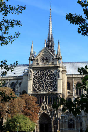 bathed: Side entrance and distinctive rose windows of the famous Notre Dame cathedral in Paris bathed in directional morning light.