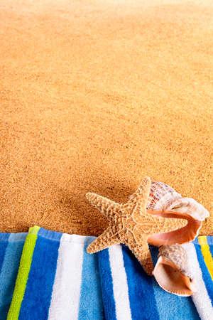 Summer beach border starfish vertical