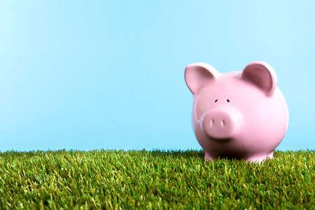 Piggy bank summer vacation savings, grass, blue sky, copy space photo