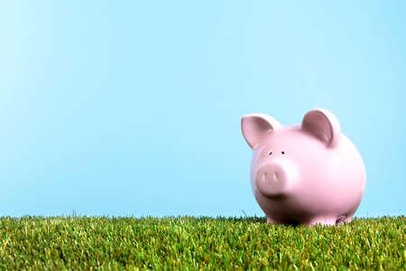 Piggy bank summer savings freedom, green grass, blue sky, copy space 스톡 콘텐츠