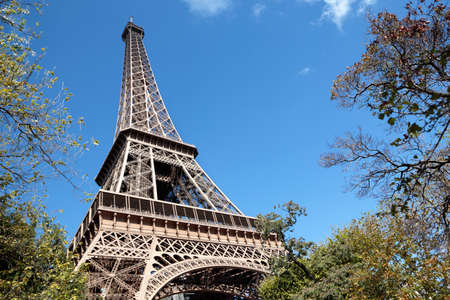 towers: Eiffel Tower framed by trees, blue sky copy space Stock Photo