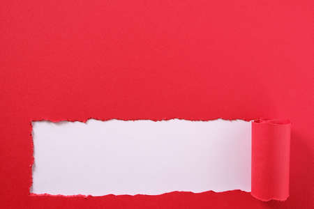Torn red paper strip curled edge bottom border white background Foto de archivo