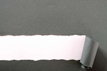 Bande de papier gris déchiré fond blanc bord recourbé