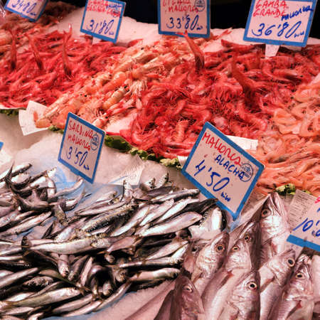Palma Mallorca, Spain - March 20, 2019 : fresh fish and seafood display for sale in the local fish market stall