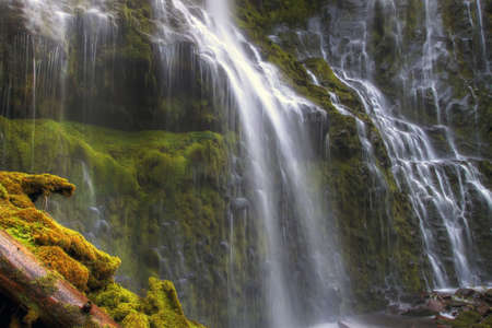 proxy falls: Proxy Falls in Oregon Stock Photo
